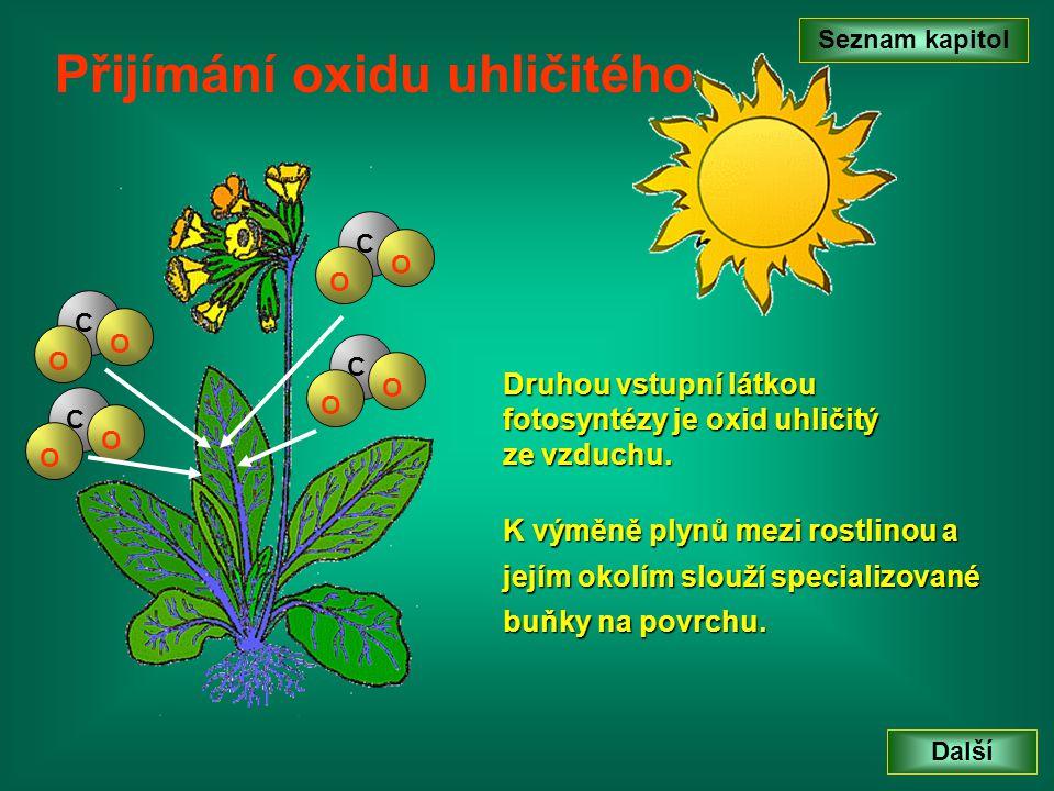 Seznam kapitol Další Přijímání oxidu uhličitého Průduchy Průduchy Svěrací buňky Svěrací buňky Dýchací dutina Dýchací dutina C O O C O O C O O C O O