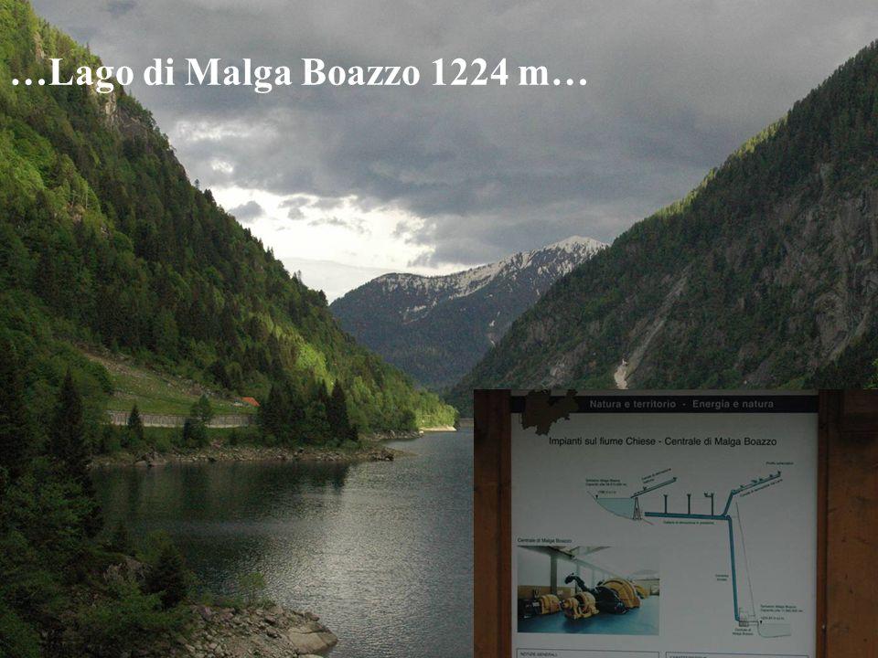 …Lago di Malga Boazzo 1224 m…