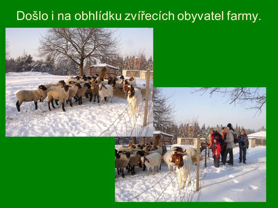 Došlo i na obhlídku zvířecích obyvatel farmy.