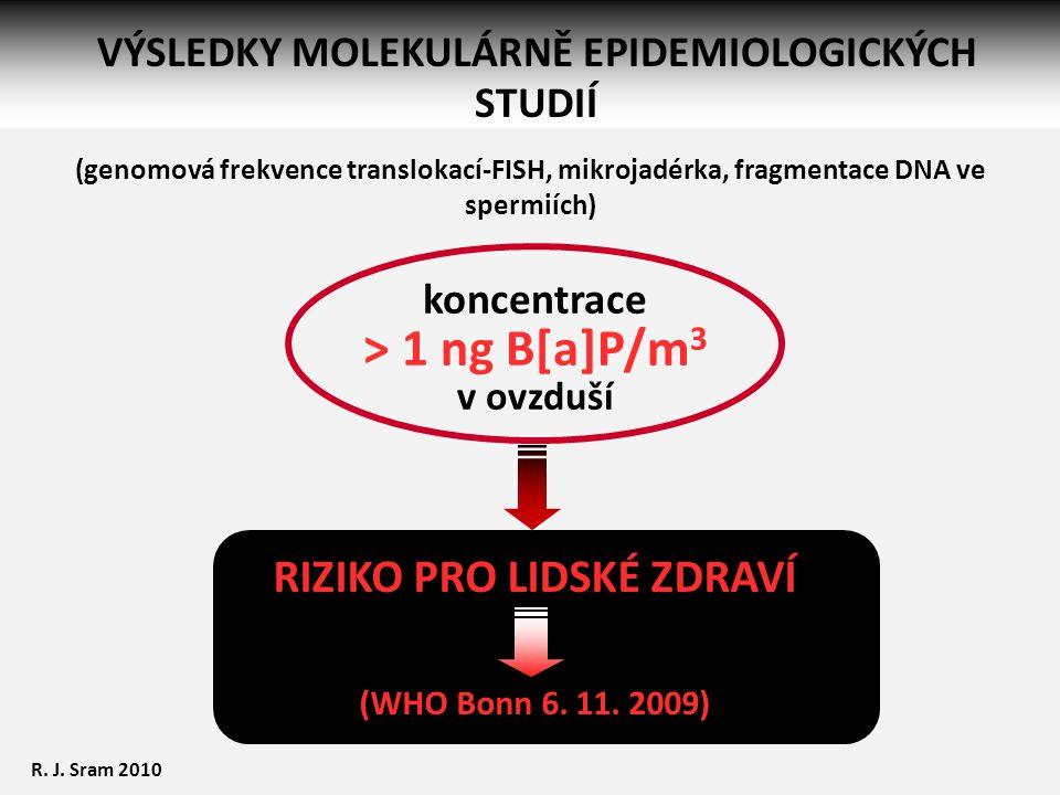 RIZIKO PRO LIDSKÉ ZDRAVÍ (WHO Bonn 6. 11. 2009) koncentrace > 1 ng B[a]P/m 3 v ovzduší VÝSLEDKY MOLEKULÁRNĚ EPIDEMIOLOGICKÝCH STUDIÍ R. J. Sram 2010 (