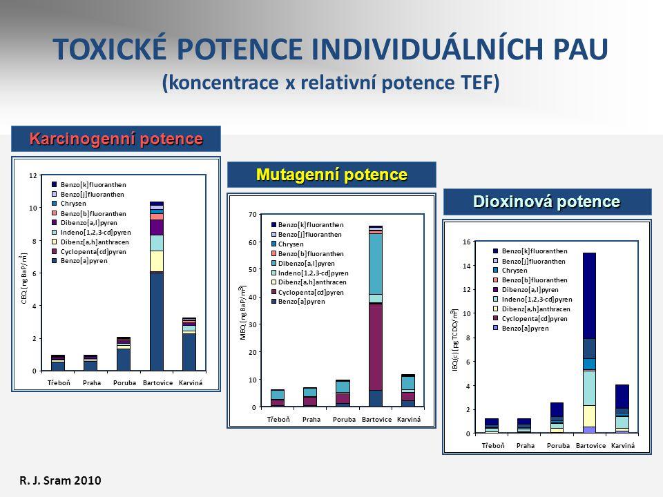 TOXICKÉ POTENCE INDIVIDUÁLNÍCH PAU (koncentrace x relativní potence TEF) Karcinogenní potence 0 2 4 6 8 10 12 TřeboňPrahaPorubaBartoviceKarviná CEQ [n