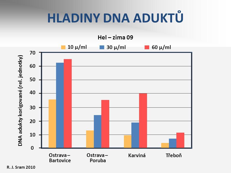 Ostrava – Bartovice Ostrava – Poruba KarvináTřeboň Hel – zima 09 DNA adukty korigované (rel. jednotky) 10 µ/ml 30 µ/ml 60 µ/ml 70 60 50 40 30 20 10 0