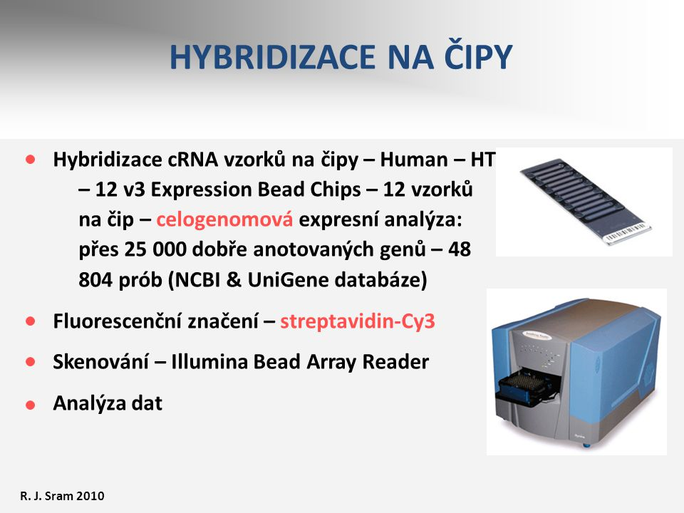 HYBRIDIZACE NA ČIPY Hybridizace cRNA vzorků na čipy – Human – HT – 12 v3 Expression Bead Chips – 12 vzorků na čip – celogenomová expresní analýza: pře