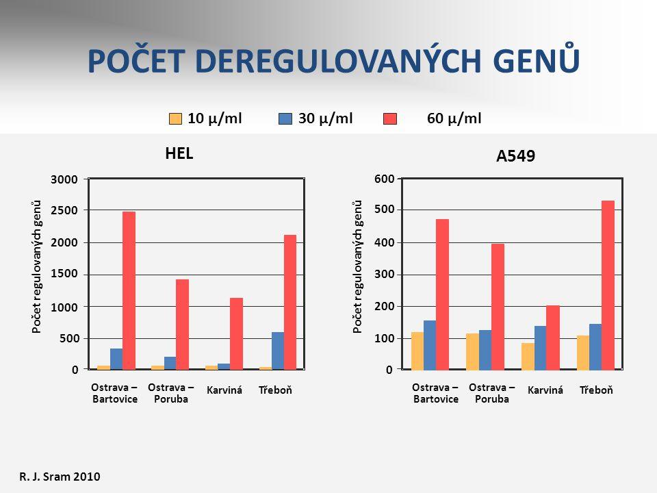 POČET DEREGULOVANÝCH GENŮ HEL 3000 0 500 1000 1500 2000 2500 Počet regulovaných genů Ostrava – Bartovice Ostrava – Poruba KarvináTřeboň A549 0 100 200