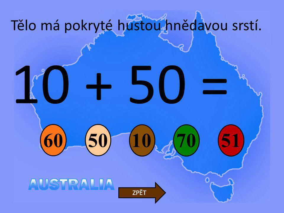10 + 50 = 10 50 7051 ZPĚT Tělo má pokryté hustou hnědavou srstí. 60