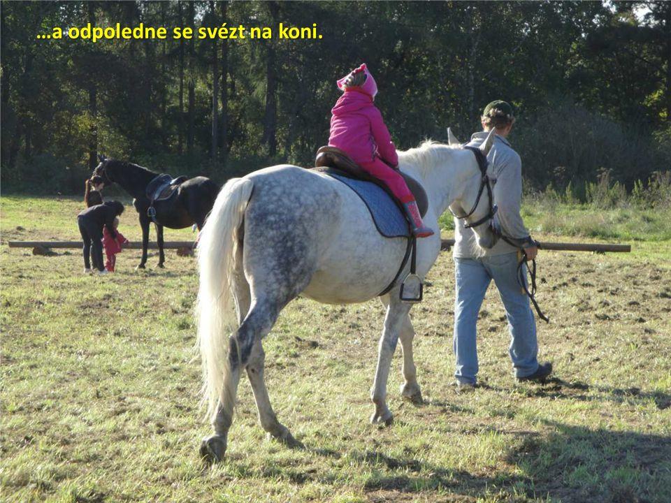 …a odpoledne se svézt na koni.