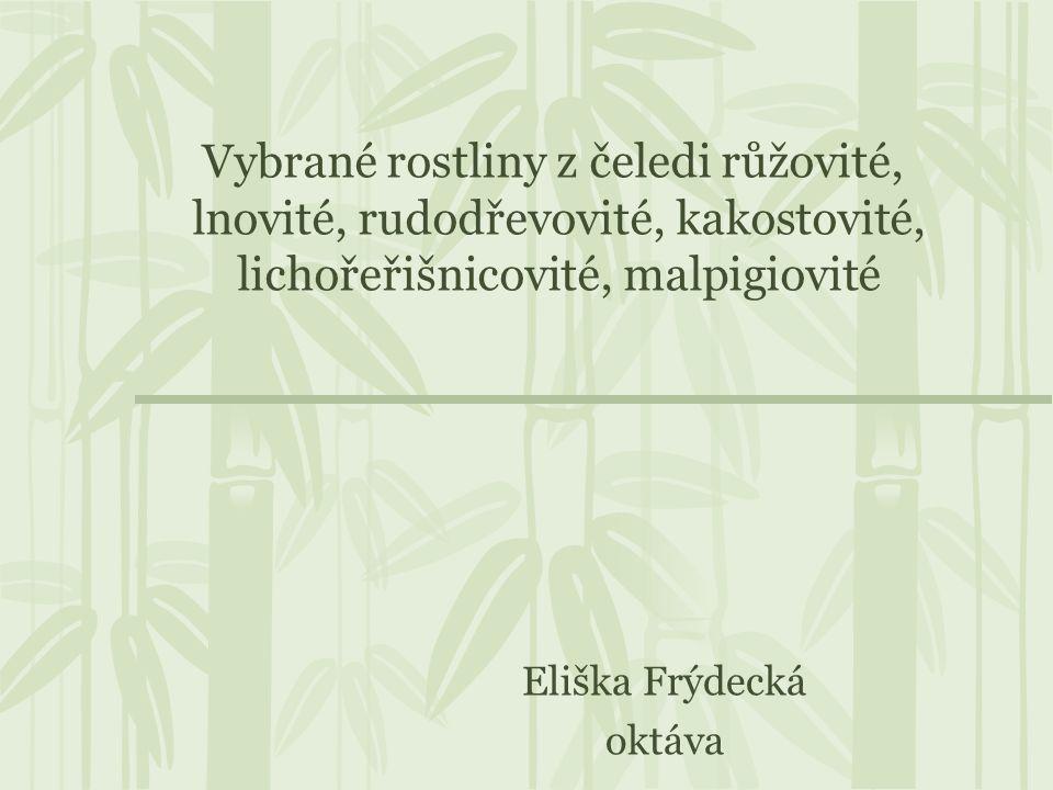 Zdroje http://cs.wikipedia.org/wiki/Temnoplodec http://botany.cz/cs/cydonia-oblonga/ http://www.medicina.cz/verejne/clanek.dss?s_id=4320&s_rub=0&s_sv=2&s_ts=39246,7015625 http://www.naturfoto.cz/fotografie/ostatni/jablon-54895.jpg http://www.biolib.cz/IMG/GAL/14134.jpg http://fotoatlaspr.zs-sychrov5.sweb.cz/jablon-05-08.JPG http://cs.wikipedia.org/wiki/Jablo%C5%88 http://botany.cz/cs/malus-domestica/ http://www.prirodopis.eu/Botanika_mobil/soubory/jablon_domaci.htm http://www.dedekkorenar.cz/clanky/o-bylinkach---humorny-special/jablon-domaci-.html http://jan1212.webgarden.cz/lecive-byliny/jablon-domaci.html http://www.pampeliska.eu/index.php?p=hrusen_obecna&site=tabor http://www.rostliny.net/rostlina/Pyrus_communis http://www.magazinzdravi.cz/hruska http://cs.wikipedia.org/wiki/Len_set%C3%BD http://lecive-bylinky.celyden.cz/len-sety/ http://kvetiny.atlasrostlin.cz/len-sety http://cs.wikipedia.org/wiki/Kokainovn%C3%ADk_prav%C3%BD http://followers.thcnet.cz/CyberNet/Punk- Rock%20Rebels%20Library/7.%20Relaxation/XTRAS/BIOTOX/www.biotox.cz/enpsyro/pj3rerc.htmlhttp://followers.thcnet.cz/CyberNet/Punk- Rock%20Rebels%20Library/7.%20Relaxation/XTRAS/BIOTOX/www.biotox.cz/enpsyro/pj3rerc.html http://listnate-kere.atlasrostlin.cz/rudodrev-koka http://botany.cz/cs/geranium-robertianum/ http://botanika.borec.cz/kakost_smrduty.php http://botanika.wendys.cz/kytky/K79.php http://botanika.wendys.cz/kytky/K377.php http://cs.wikipedia.org/wiki/Licho%C5%99e%C5%99i%C5%A1nice_v%C4%9Bt%C5%A1%C3%AD