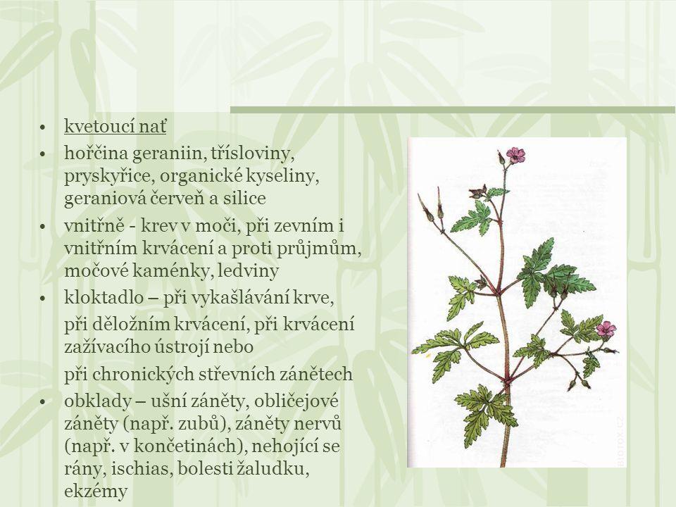 kvetoucí nať hořčina geraniin, třísloviny, pryskyřice, organické kyseliny, geraniová červeň a silice vnitřně - krev v moči, při zevním i vnitřním krvá