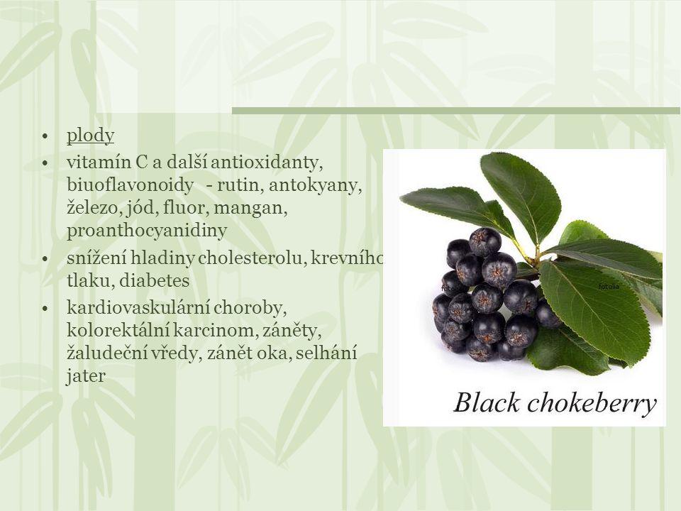 plody vitamín C a další antioxidanty, biuoflavonoidy - rutin, antokyany, železo, jód, fluor, mangan, proanthocyanidiny snížení hladiny cholesterolu, k