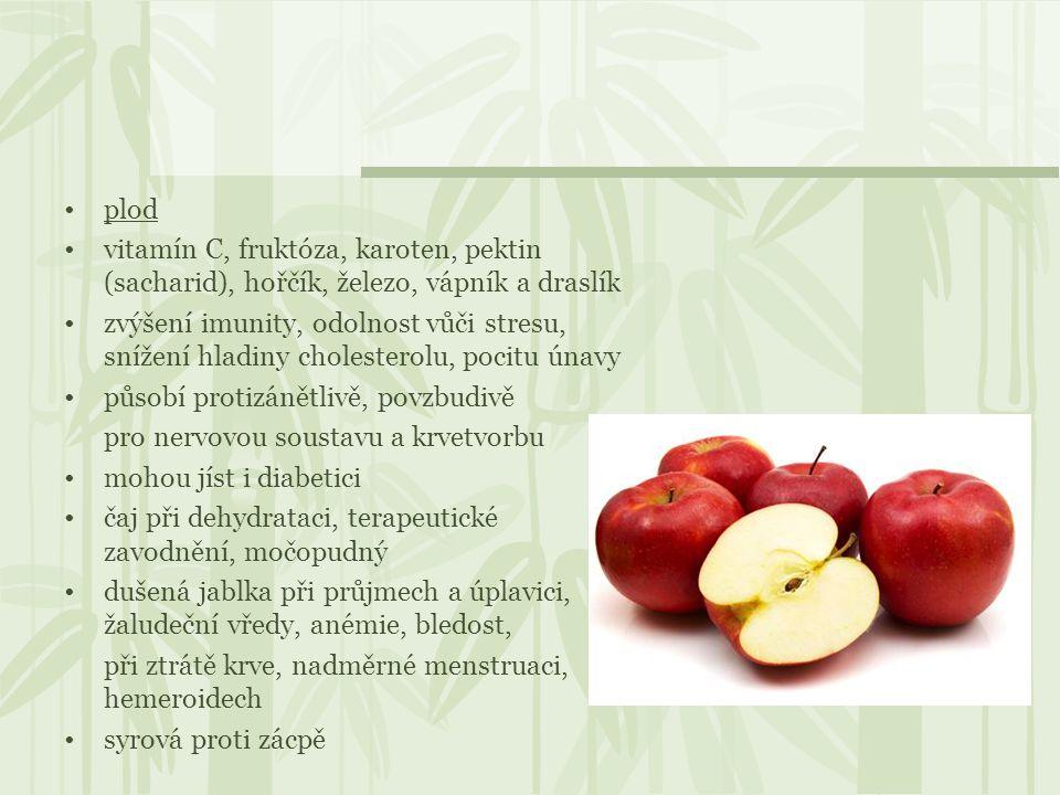 plod vitamín C, fruktóza, karoten, pektin (sacharid), hořčík, železo, vápník a draslík zvýšení imunity, odolnost vůči stresu, snížení hladiny choleste