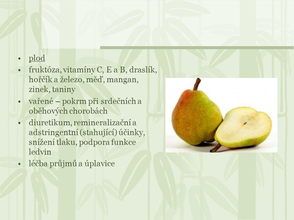 plod fruktóza, vitamíny C, E a B, draslík, hořčík a železo, měď, mangan, zinek, taniny vařené – pokrm při srdečních a oběhových chorobách diuretikum,
