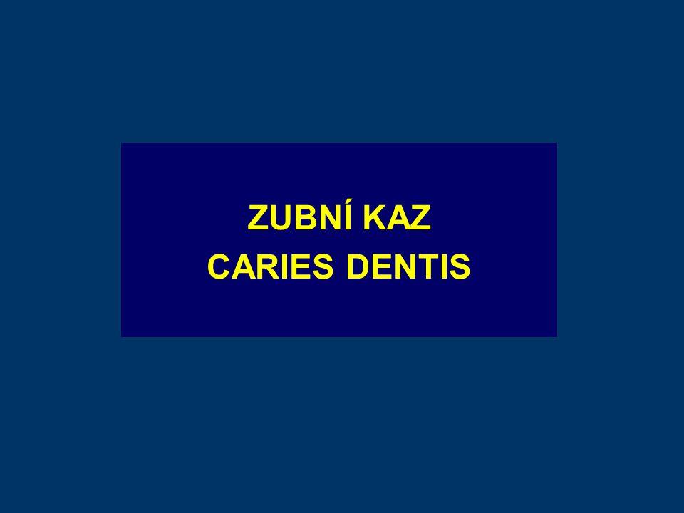 ZUBNÍ KAZ CARIES DENTIS