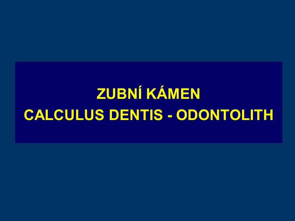 ZUBNÍ KÁMEN CALCULUS DENTIS - ODONTOLITH