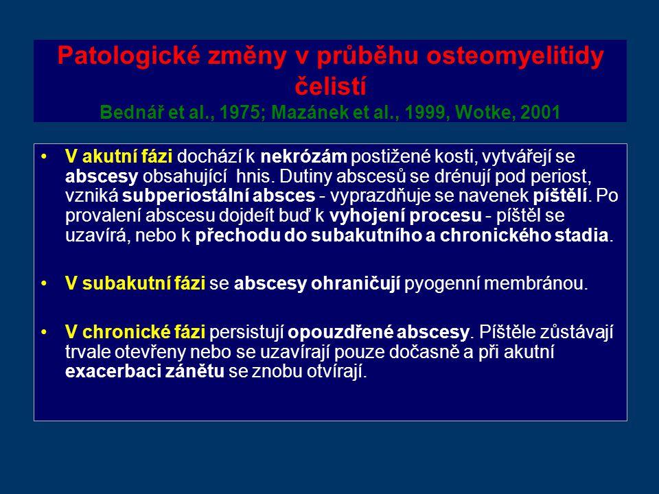 Patologické změny v průběhu osteomyelitidy čelistí Bednář et al., 1975; Mazánek et al., 1999, Wotke, 2001 V akutní fázi dochází k nekrózám postižené kosti, vytvářejí se abscesy obsahující hnis.
