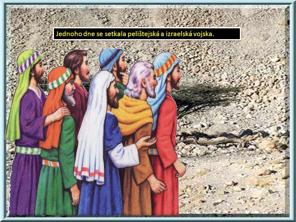 David se rozhodl, že se s Goliášem utká.David se rozhodl, že se s Goliášem utká.