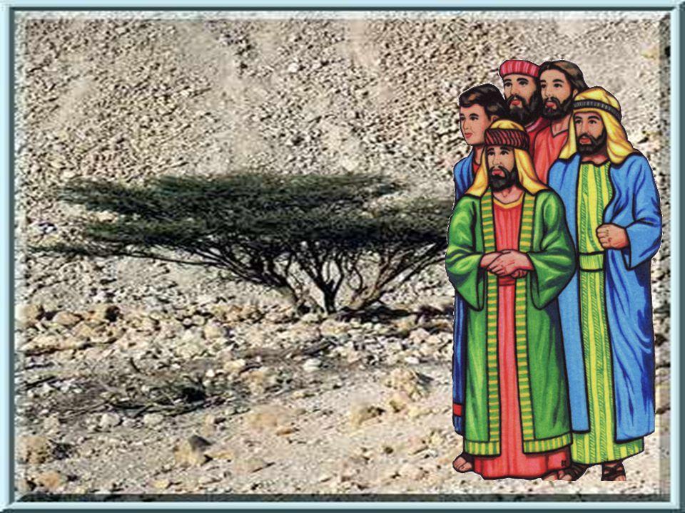 Jednoho dne se setkala pelištejská a izraelská vojska.