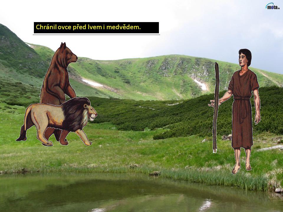Mezitím izraelský chlapec David pase stáda ovcí svého otce.
