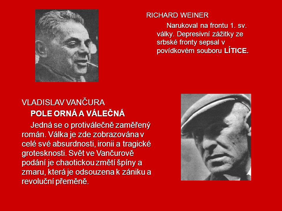 Hlavní myšlenka díla Hašek chtěl poukázat na obraz nesmyslné a kruté války, ničemnosti a surovosti. Román je geniální satira na rakouský militarismus
