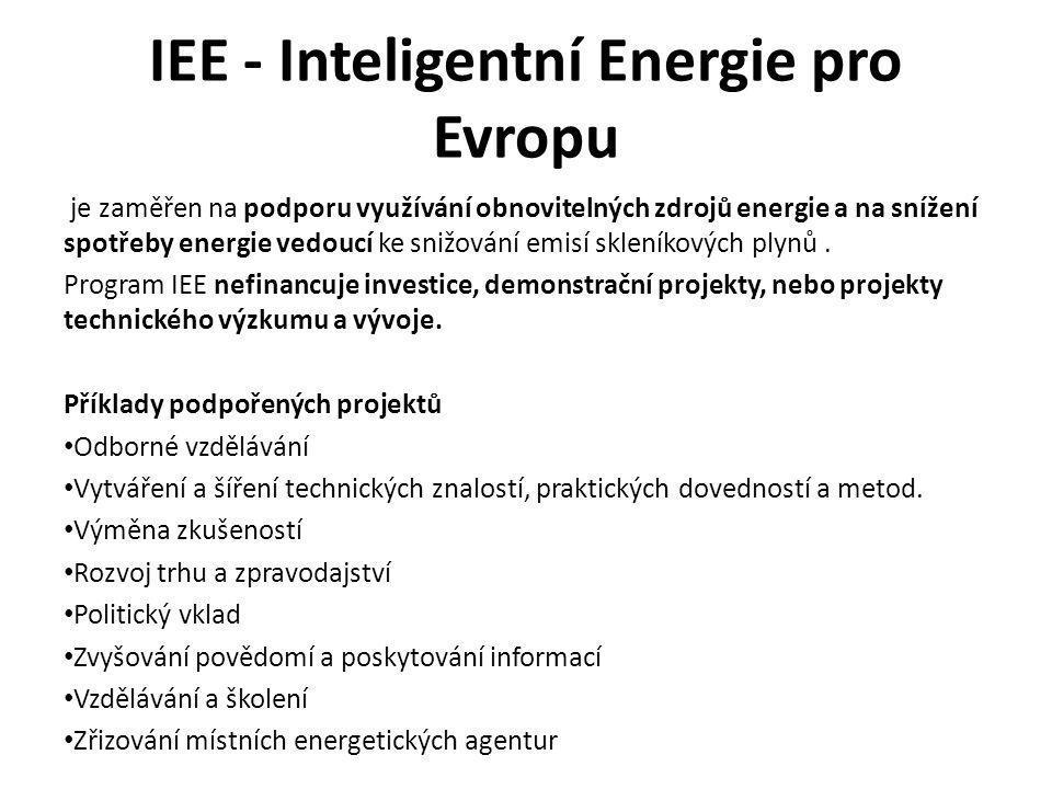 IEE - Inteligentní Energie pro Evropu je zaměřen na podporu využívání obnovitelných zdrojů energie a na snížení spotřeby energie vedoucí ke snižování emisí skleníkových plynů.