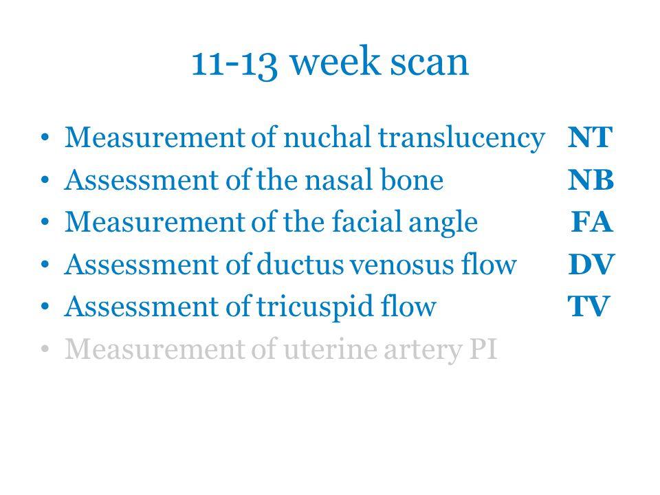 """11-13 week scan: NT Podmínky: 1.Internetový kurz 2.Logbook 3 snímků měření NT Protokol: 1.Zvětšení 2.Sagitální řez 3.Neutrální poloha 4.Kalipery """"on-on 5.Maximální lucence 6.Tenké okraje"""