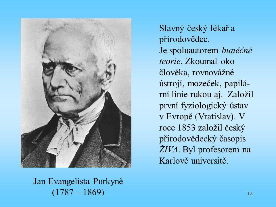 12 Jan Evangelista Purkyně (1787 – 1869) Slavný český lékař a přírodovědec. Je spoluautorem buněčné teorie. Zkoumal oko člověka, rovnovážné ústrojí, m