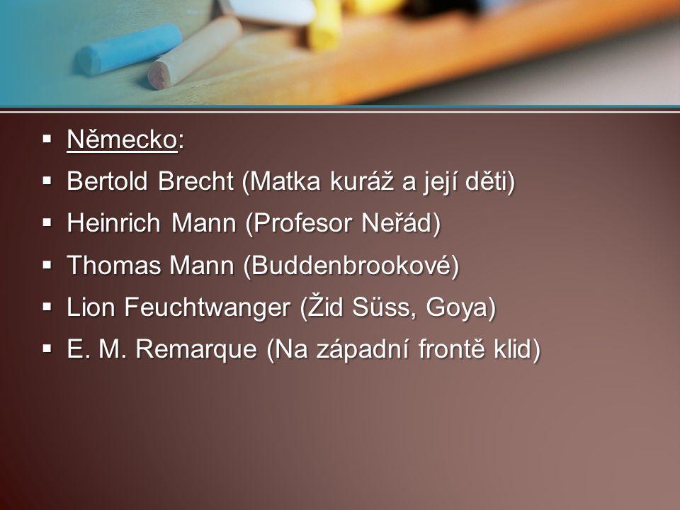 Německo:  Bertold Brecht (Matka kuráž a její děti)  Heinrich Mann (Profesor Neřád)  Thomas Mann (Buddenbrookové)  Lion Feuchtwanger (Žid Süss, G