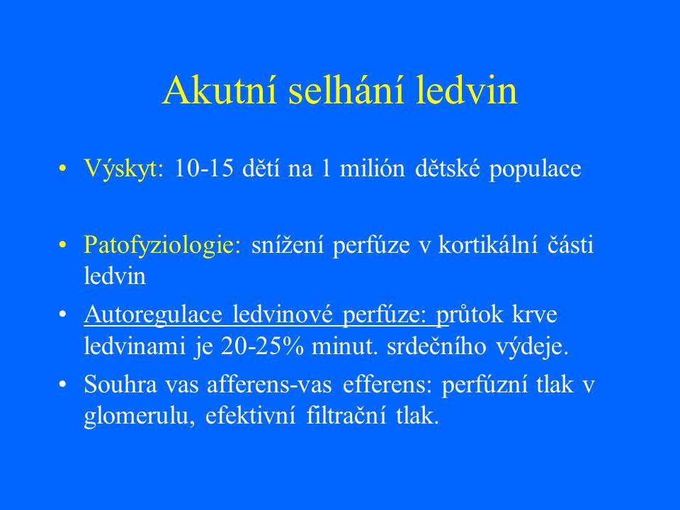 Akutní selhání ledvin Výskyt: 10-15 dětí na 1 milión dětské populace Patofyziologie: snížení perfúze v kortikální části ledvin Autoregulace ledvinové
