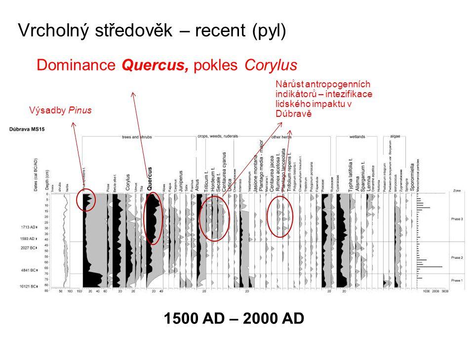 Vrcholný středověk – recent (pyl) Dominance Quercus, pokles Corylus Nárůst antropogenních indikátorů – intezifikace lidského impaktu v Dúbravě Výsadby