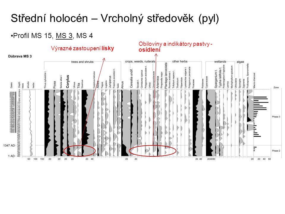 Střední holocén – Vrcholný středověk (pyl) Profil MS 15, MS 3, MS 4 Výrazné zastoupení lísky Obiloviny a indikátory pastvy - osídlení