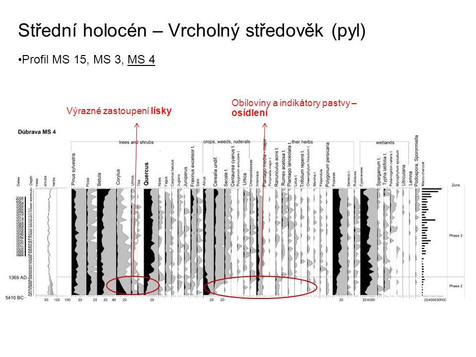 Střední holocén – Vrcholný středověk (pyl) Profil MS 15, MS 3, MS 4 Výrazné zastoupení lísky Obiloviny a indikátory pastvy – osídlení