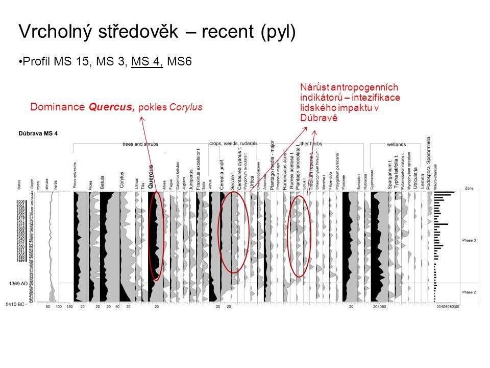Vrcholný středověk – recent (pyl) Profil MS 15, MS 3, MS 4, MS6 Dominance Quercus, pokles Corylus Nárůst antropogenních indikátorů – intezifikace lids