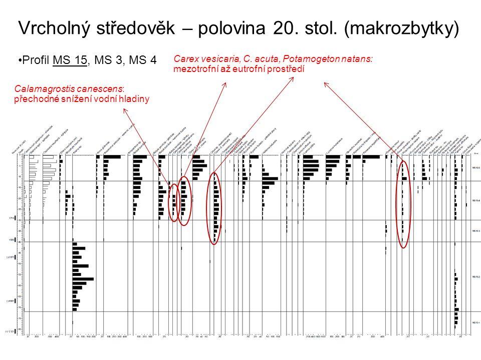Vrcholný středověk – polovina 20. stol. (makrozbytky) Profil MS 15, MS 3, MS 4 Carex vesicaria, C. acuta, Potamogeton natans: mezotrofní až eutrofní p