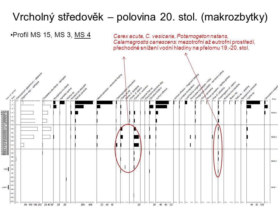 Vrcholný středověk – polovina 20. stol. (makrozbytky) Profil MS 15, MS 3, MS 4 Carex acuta, C. vesicaria, Potamogeton natans, Calamagrostis canescens:
