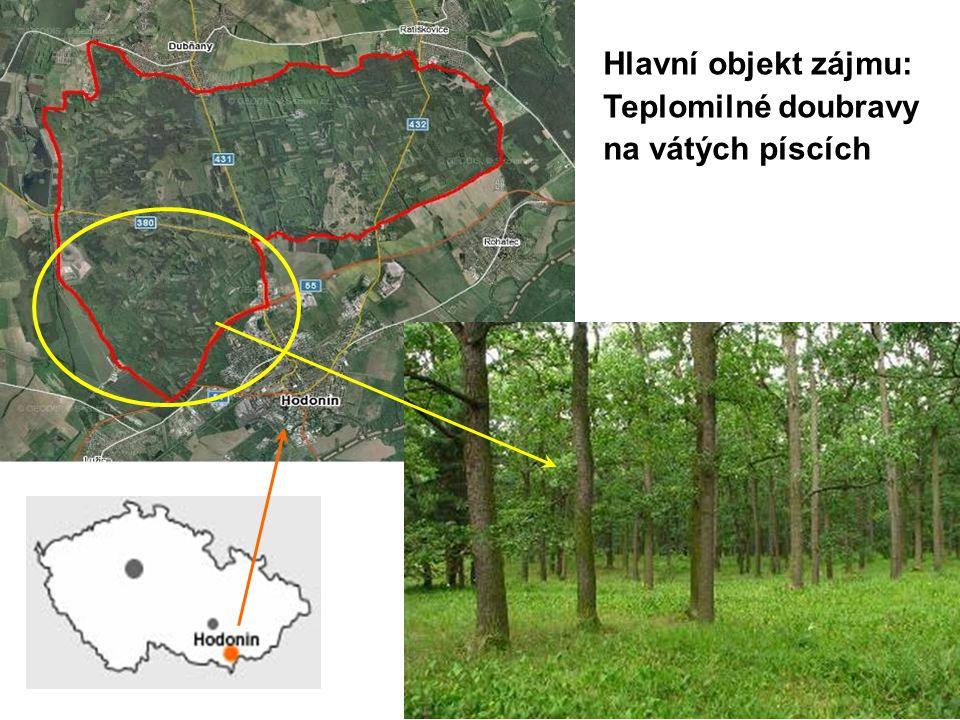 Vrcholný středověk – recent (pyl) Profil MS 15, MS 3, MS 4, MS6 Dominance Quercus, pokles Corylus Nárůst antropogenních indikátorů – intezifikace lidského impaktu v Dúbravě