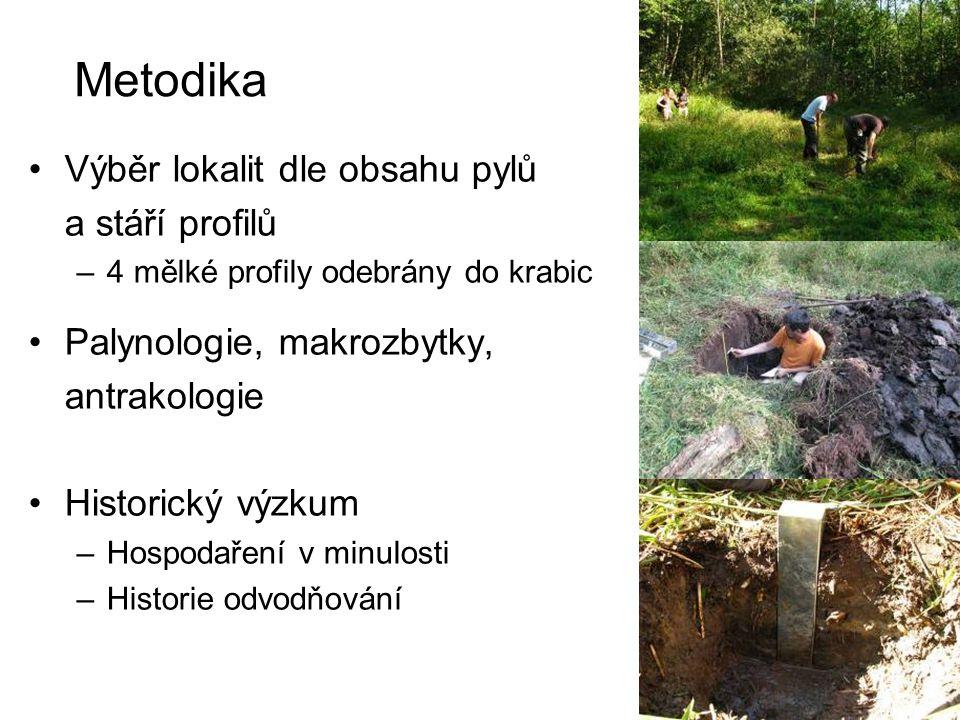 Vrcholný středověk – polovina 20.stol. (makrozbytky) Profil MS 15, MS 3, MS 4 Carex vesicaria, C.