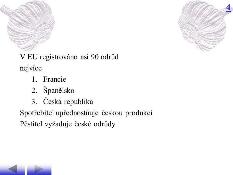 4 V EU registrováno asi 90 odrůd nejvíce 1.Francie 2.Španělsko 3.Česká republika Spotřebitel upřednostňuje českou produkci Pěstitel vyžaduje české odrůdy