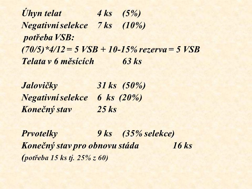 Úhyn telat4 ks (5%) Negativní selekce 7 ks (10%) potřeba VSB: (70/5)*4/12 = 5 VSB + 10-15% rezerva = 5 VSB Telata v 6 měsících 63 ks Jalovičky 31 ks (