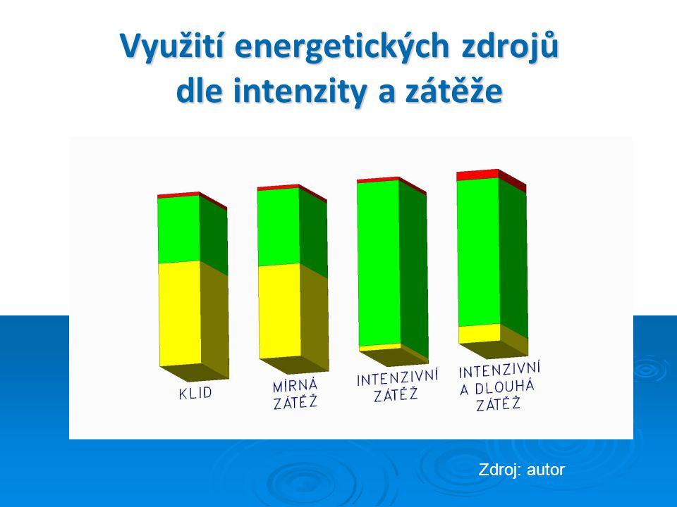 Využití energetických zdrojů dle intenzity a zátěže Zdroj: autor