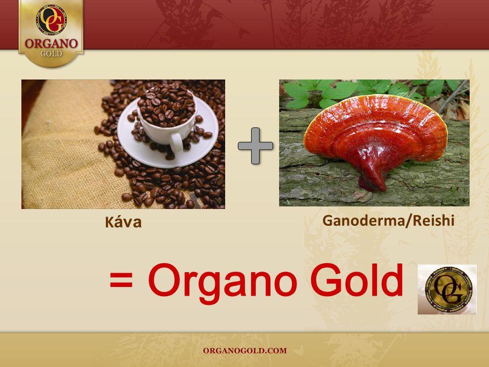 Ganoderma/Reishi K áva = Organo Gold
