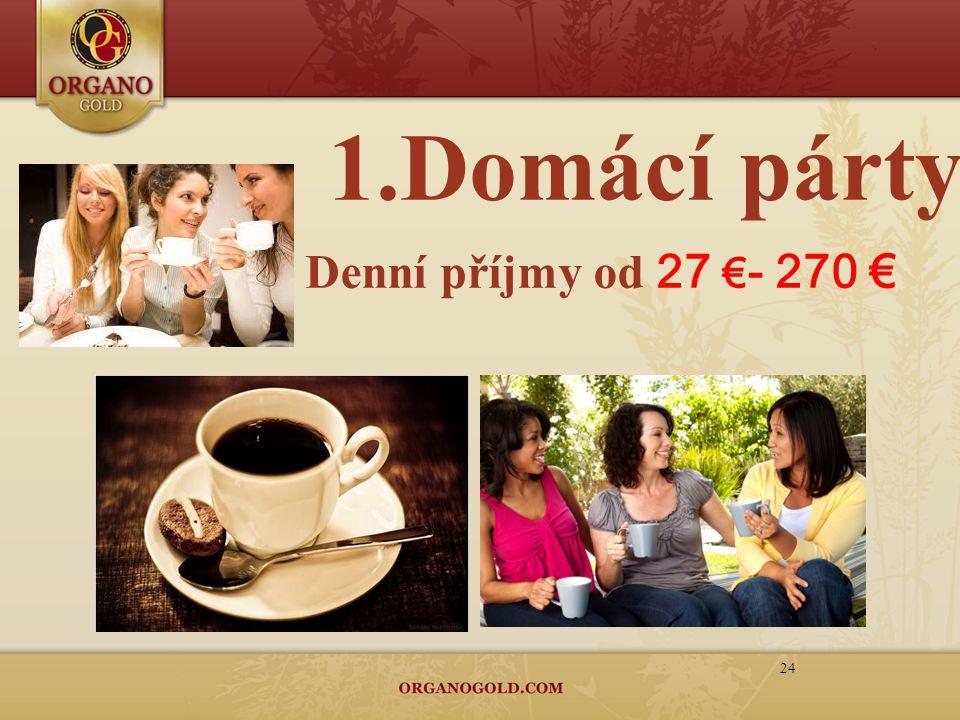 1.Domácí párty 24 Denní příjmy od 27 € - 270 €