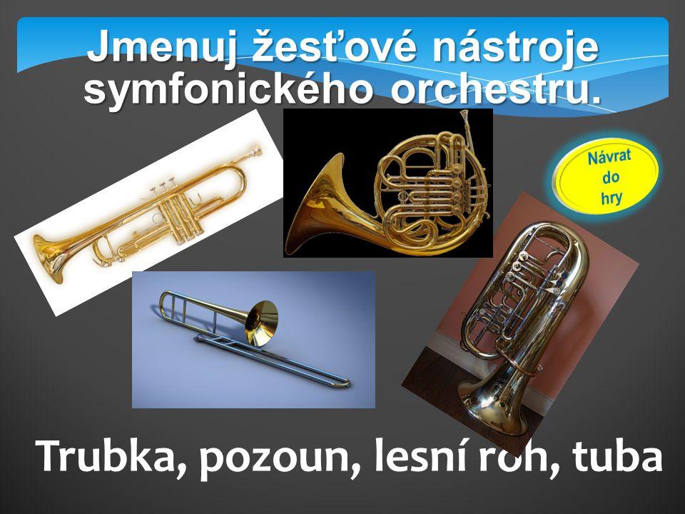 Jak nazýváme kovový nástavec žesťových hudebních nástrojů? nátrubek
