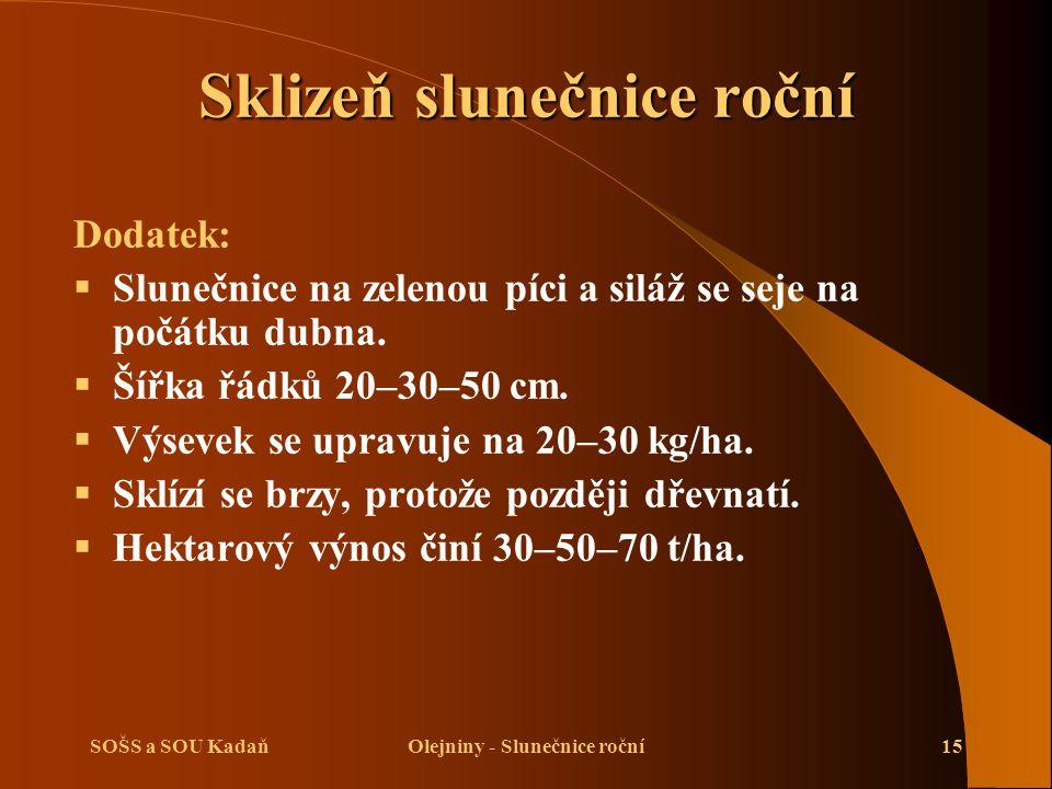 SOŠS a SOU KadaňOlejniny - Slunečnice roční15 Dodatek:  Slunečnice na zelenou píci a siláž se seje na počátku dubna.