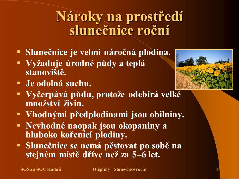 SOŠS a SOU KadaňOlejniny - Slunečnice roční7 Výživa a hnojení slunečnice roční  Slunečnice je velmi náročná na živiny.