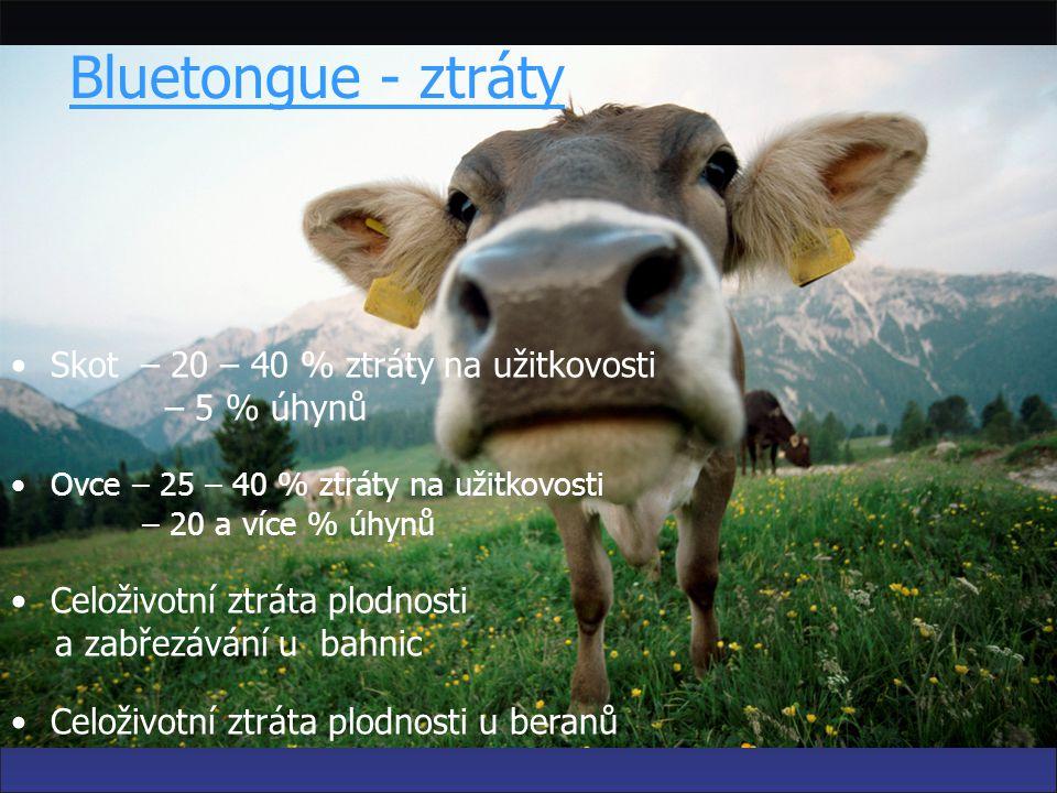 katarální horečka ovcí (Bluetongue) Nouzová vakcinace - 2008 MVDr. Zbyněk Semerád STÁTNÍ VETERINÁRNÍ SPRÁVA ČR