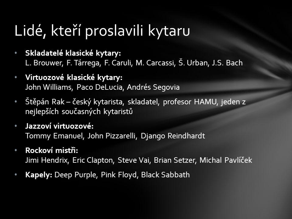 Skladatelé klasické kytary: L. Brouwer, F. Tárrega, F. Caruli, M. Carcassi, Š. Urban, J.S. Bach Virtuozové klasické kytary: John Williams, Paco DeLuci