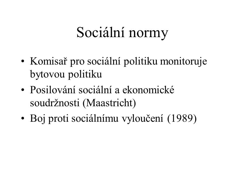 Sociální normy Komisař pro sociální politiku monitoruje bytovou politiku Posilování sociální a ekonomické soudržnosti (Maastricht) Boj proti sociálnímu vyloučení (1989)