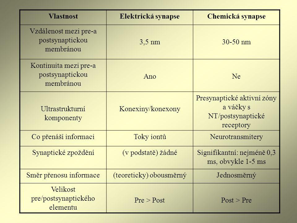 VlastnostElektrická synapseChemická synapse Vzdálenost mezi pre-a postsynaptickou membránou 3,5 nm30-50 nm Kontinuita mezi pre-a postsynaptickou membr