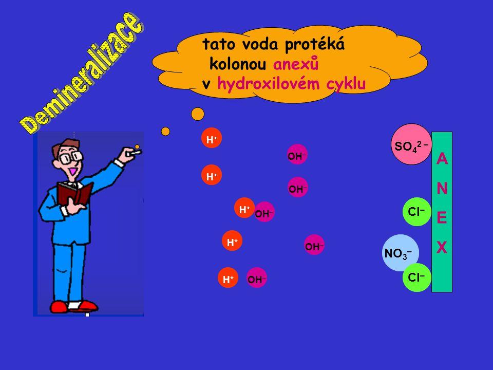 OH – H+H+ H+H+ H+H+ H+H+ H+H+ NO 3 – OH – SO 4 2 – OH – Cl – ANEXANEX OH – H+H+ H+H+ H+H+ H+H+ H+H+ NO 3 – OH – SO 4 2 – OH – Cl – ANEXANEX tato voda protéká kolonou anexů v hydroxilovém cyklu