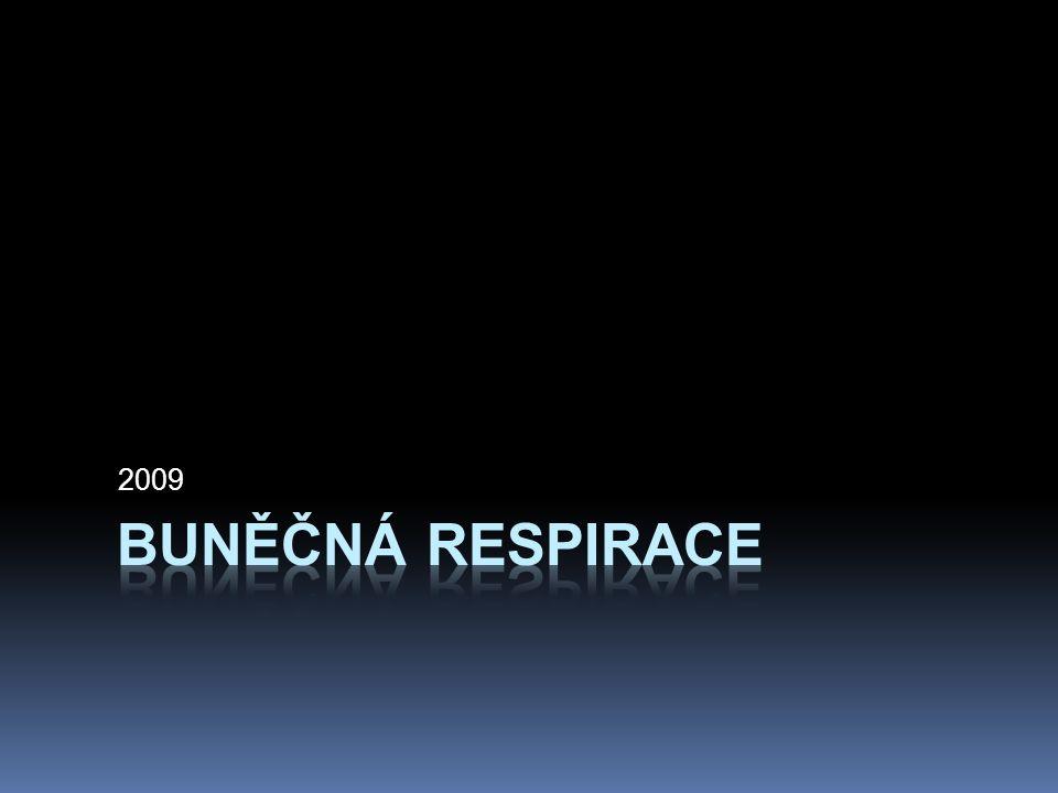 """Exergonické reakce = energie se uvolňuje Elektrony """"padají z organických molekul na kyslík během buněčné respirace C 6 H 12 O 6 + 6O 2 6CO 2 + 6H 2 O oxidace redukce Podobně jako při hoření metanu nebo spalování benzínu v autě, palivo, benzín, je oxidováno a kyslík se redukuje, a během těchto reakcí elektrony ztrácí svou potenciální energii."""
