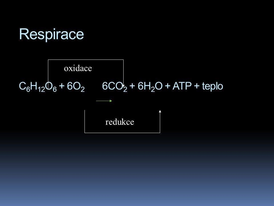 Respirace C 6 H 12 O 6 + 6O 2 6CO 2 + 6H 2 O + ATP + teplo oxidace redukce